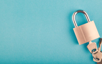 KIWI-TEK Excels in Privacy and Security Risk Assessment